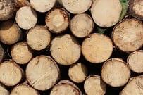 10 leuke weetjes over hout dat verder werkt - Bouwbakkie